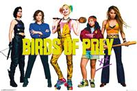 GB eye Birds of Prey Poster Pack Group 61 x 91 cm (5)