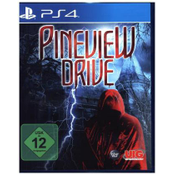 Playstation 4 - Pineview Drive