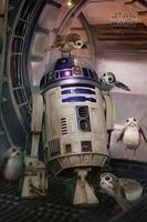 GB Eye Star Wars Poster - Last Jedi R2-D2 & Porgs (61cm x 91,5cm)
