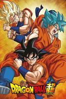 Dragonball Super Goku Poster