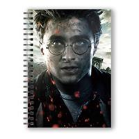 SD Toys Harry Potter Notebook with 3D-Effect Harry Potter Face