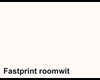Fastprint Kopieerpapier  A4 80gr roomwit 100vel