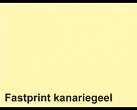 Fastprint Kopieerpapier  A4 160gr kanariegeel 50vel