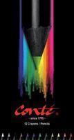 12  kleurpotloden in bliketui