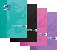Elba Oxford SCHOOL cursusblok, geassorteerde kleuren, ft A4, 100 vel, geruit 10 mm