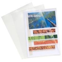 Exacompta Kartonnen etui 100 L mappen in gladde PVC extra stevig 12/100ste - A4 (56111E)