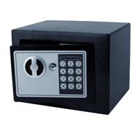 Pavo Kluis  mini 230x170x170mm elektronisch zwart