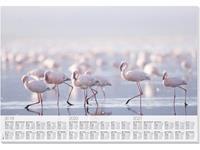 sigel #onderleggers  Flamingo met 3 jarig kalendarium 30 vel        2019/20/21