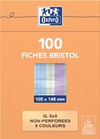 Flashcard  105x148mm 100vel 210gr ruit 5mm assorti