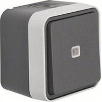 Berker 50763505 - Push button 1 change-over contact grey 50763505