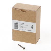 Dulimex anti-inbraak toerschroeven 4,0 x 30 mm RVS 1124204030
