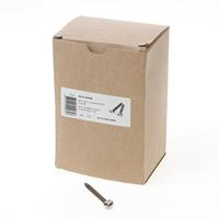 Dulimex RAIS 5050B Anti-inbraakschroef 5.0 x 50mm RVS 0112.420.5050