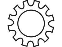 Tandwielen Binnendiameter: 5.3 mm M5 Staal verzinkt 100 stuks TOOLCRAFT 815179