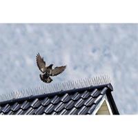 Nature duivenpinnen d1.3mm
