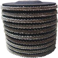 Westfalia 10 Lamellen slijpschijven 115 mm, 2 van elke K40 / K60 / K80 / K100 / K120