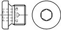 toolcraft TO-6855792 Sluitschroeven 1 1/8 inch Binnenzeskant (inbus) DIN 908 Staal 10 stuk(s)