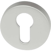 Assa Abloy effeff 492----1-----00 - Accessory for intrusion detection 492----1-----00
