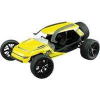 Amewi Brushless 1:6 RC auto Elektro Monstertruck 2WD RTR 2,4 GHz