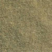 NOCH 07101 Wildgras