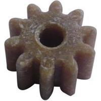 Hout, Kunststof Modelcraft Soort module: 1.0 Aantal tanden: 10 1 stuks
