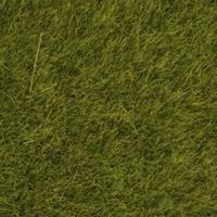 NOCH 07100 Wildgras weide, 6 mm, 50 g