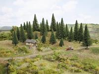 Set bomen Spar Hoogte (min.): 50 mm Hoogte (max.): 140 mm NOCH 26830 Donkergroen 25 stuks