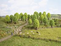 Set bomen Loofbos Hoogte (min.): 50 mm Hoogte (max.): 120 mm NOCH 26836 1 stuks