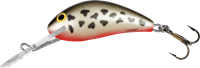 Hornet - 5 cm - dalmatian