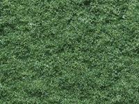 NOCH 07352 Vlokken Groen (gemiddeld)
