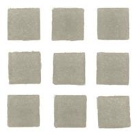Geen 30 stuks vierkante mozaieksteentjes grijs 2 cm Grijs