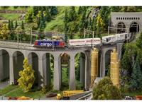 N Steenbrug 2 sporen Faller 222598