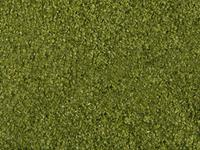 NOCH 07300 Bladeren Bladeren Groen (gemiddeld)