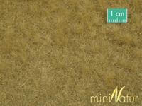 Mininatur 713-24 S Landschapsmat (l x b) 315 mm x 250 mm