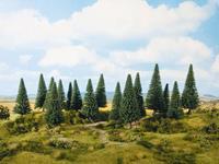 NOCH 0024640 Set bomen Spar 100 tot 140 mm 8 stuk(s)