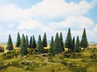 NOCH 0024642 Set bomen Spar 140 tot 180 mm 6 stuk(s)
