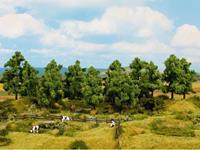 NOCH 0024602 Set bomen Loofbos 140 tot 180 mm 6 stuk(s)
