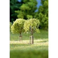 auhagen 70950 Set bomen Loofboom 23 tot 42 mm 10 stuk(s)