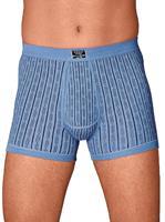 ESGE Die Wäsche - Macher  Tailleslip, lichtblauw geprint