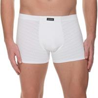 Bruno Banani Check Line 2.0 Shorts