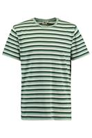 America Today Heren T-shirt Elgin Stripe Groen