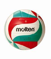V5M2000 volleybal
