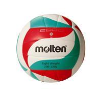 V5M2000-L volleybal