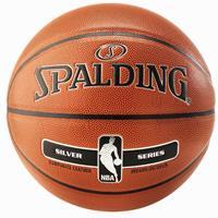 Spalding NBA Silver Indoor/Outdoor Basketball New