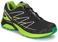 Salomon Wings flyte gtx