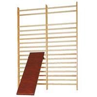 Sport-Thieme Schuine plank