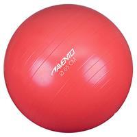 Avento Fitnessbal 65 cm roze