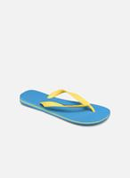 Slippers Brazil Logo H by Havaianas