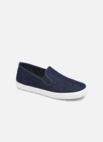 Cienta Sneakers Paulo by