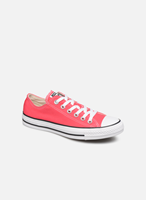 Converse Chuck Taylor All Star Seasonal Colour Low Top