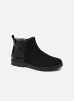 Primigi Boots en enkellaarsjes PRY 44417 by